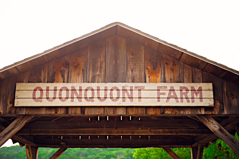 JASMINE_TARA_PHOTOGRAPHY_APPLE_ORCHARD_QUONQUONT_FARM_DESTINATION_WEDDING_JASMINE_BALGOBIN26